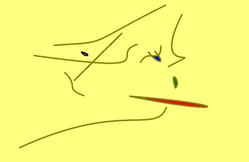 speedo